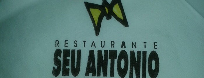Seu Antônio is one of When in Rio.