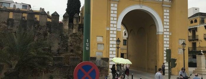 Barrio Macarena is one of Top 10 favorites places in Sevilla, España.