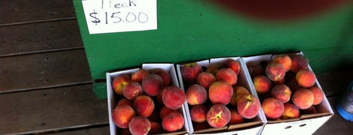 Pee Dee Orchards is one of 500 Things to Eat & Where - South.