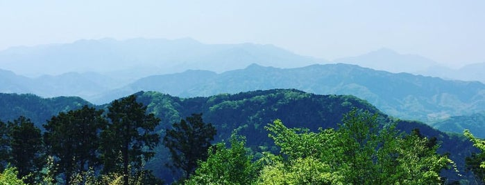 Top of Mt. Takao is one of Travel Guide to Tokyo.