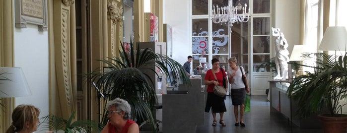 Il Circolo dei Lettori is one of Torino.