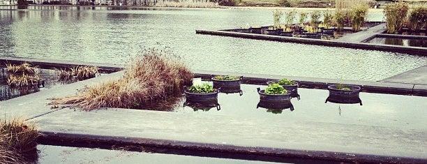 Jardin Botanique is one of SmartTrip в Бордо с Анной-Алисой.