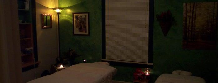 Massage & Wellness is one of MSU SPECIALS.