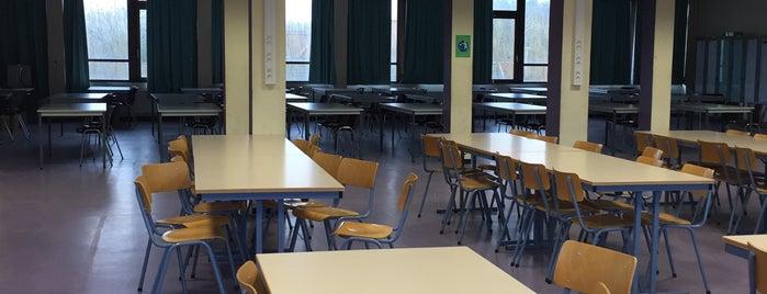 Mediatheek is one of school.