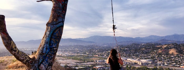 Swing On Top Of Elysian Park is one of LA/SoCal.