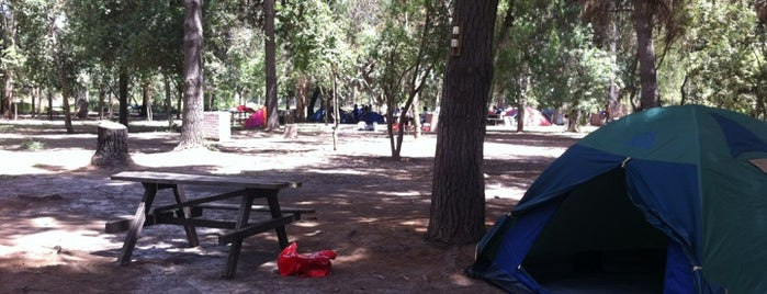 Parque Aleman is one of Campings.