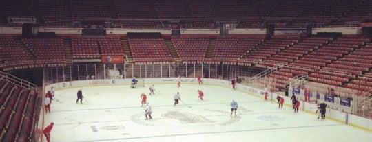 Joe Louis Arena is one of NHL arenas.