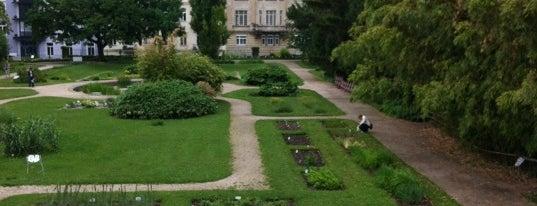 Botanischer Garten is one of StorefrontSticker #4sqCities: Vienna.
