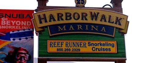 HarborWalk Adventures is one of Florida.