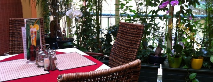 Thai restaurant Siam Orchid is one of Asijske restaurace Praha.