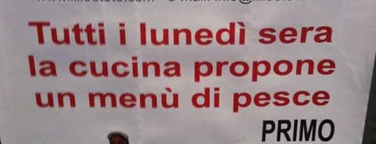 Pizza, Pasta & Co. (Emilia Romagna)