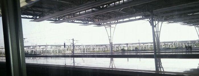 Subway   赛百味 is one of Transportation.
