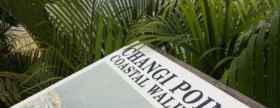 Changi Point Coastal Walk is one of Trek Across Singapore.