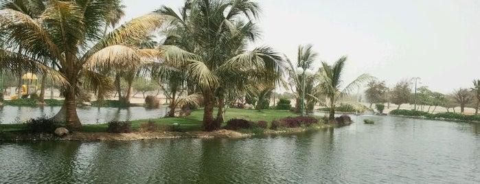 Yanbu Industrial City Lake is one of Yanbu.