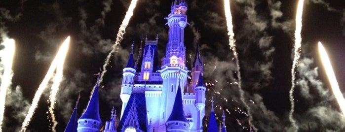 Magic Kingdom® Park is one of Dicas de Orlando..