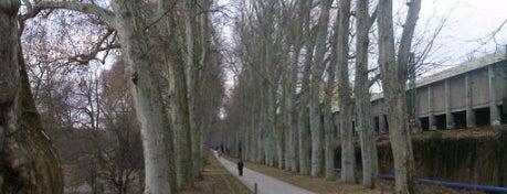 Unterer Schlossgarten is one of Favorite Parks around the Globe.