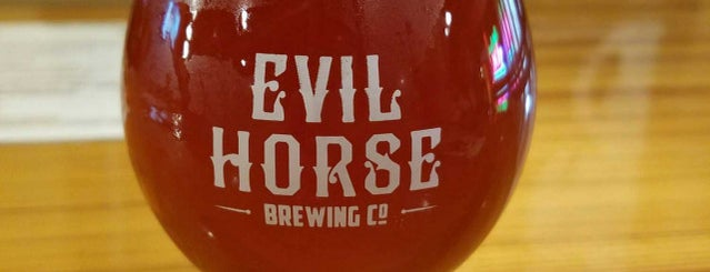 Evil Horse Brewing Company is one of Naperville, IL & the S-SW Suburbs.