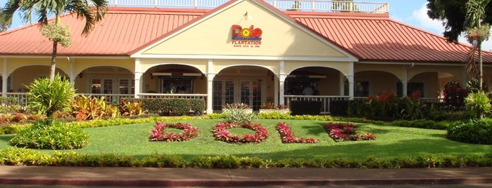 Dole Plantation is one of Hawaiian Newbie.