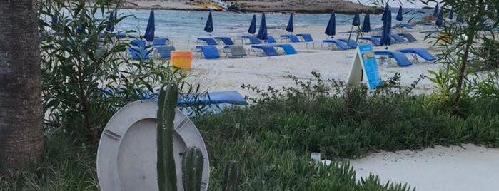 Vathia Gonia Beach is one of Cyprus beach.