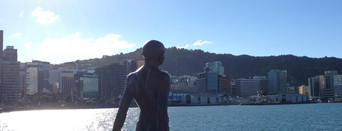 Waterfront Walkway is one of NZ to go.