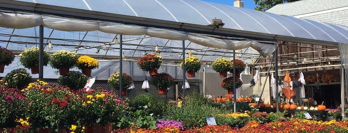 Araujo Farms & Greenhouses is one of Favorites.