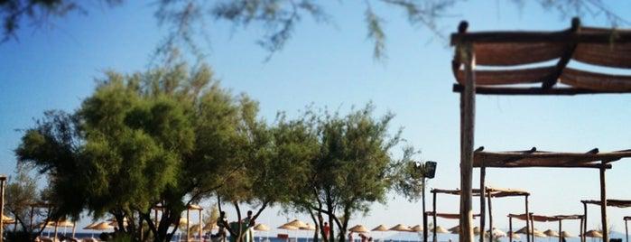 Aytaş Beach Club is one of Benim küçük dünyam :).