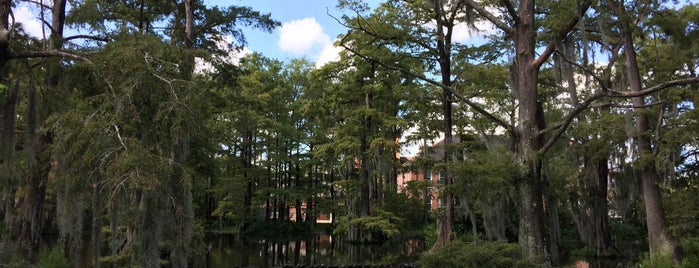 Cypress Lake is one of LAfayette.