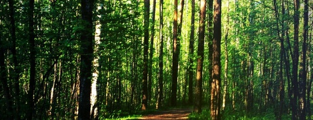 Пискарёвский парк is one of PG.