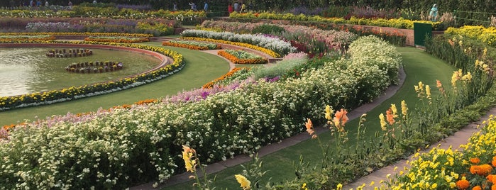 Mughal Gardens is one of Top 10 favorites places in New Delhi, India.