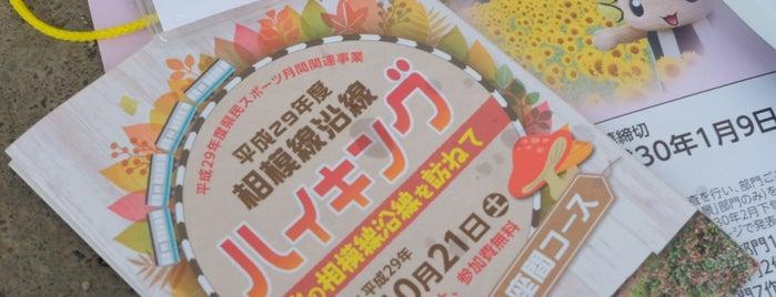 座間市立 入谷小学校 is one of 海老名・綾瀬・座間・厚木.