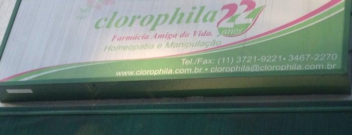 Clorophila Farmacia is one of Compras.