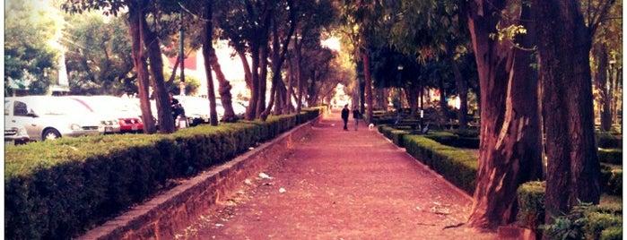 Parque Arboledas is one of Top picks for Plazas.