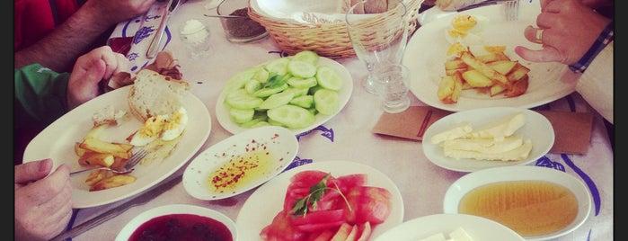 Çakır Kahvaltı Evi is one of Gezmece, tozmaca !.