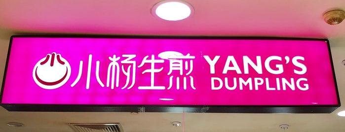 Yang's Fried Dumpling is one of Food/Drink.