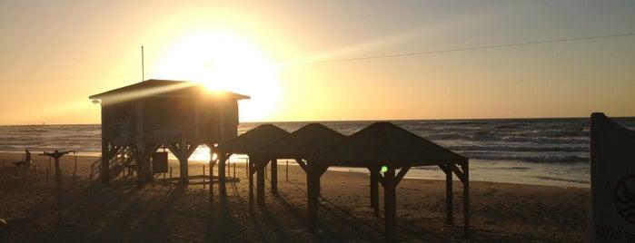 Alma Beach is one of Israel.