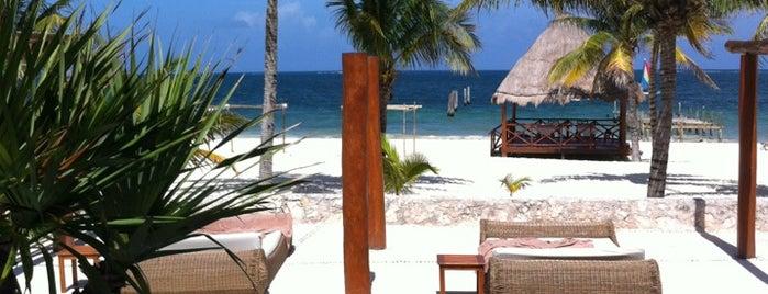 Beach is one of Puerto Morelos.