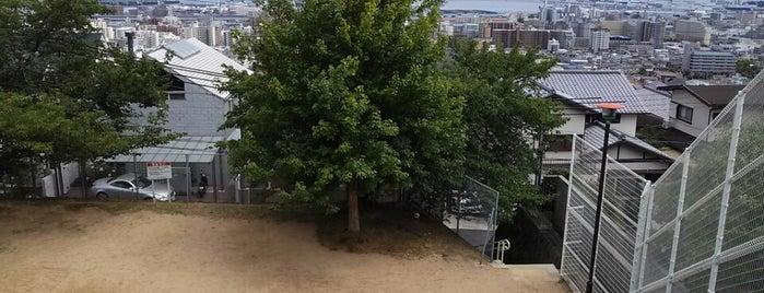 甲南台公園 is one of 公園.