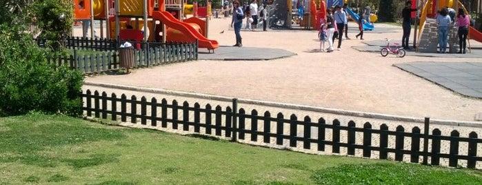Flisvos Park is one of children friendly.