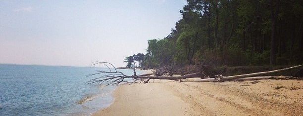 Point Lookout State Park is one of The Great Outdoors.