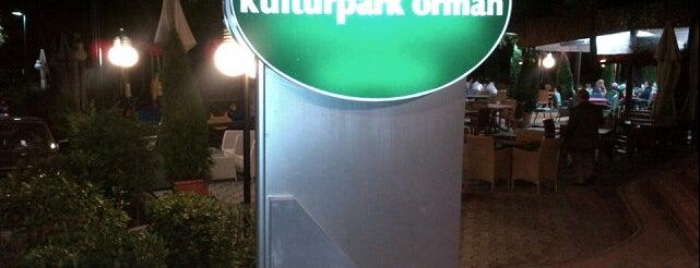 Orman Çay Bahçesi is one of Bursa'da.