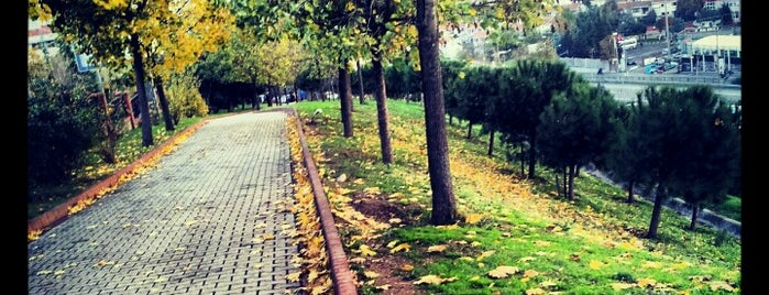 Sporcular Parkı is one of İstanbul'daki Park, Bahçe ve Korular.