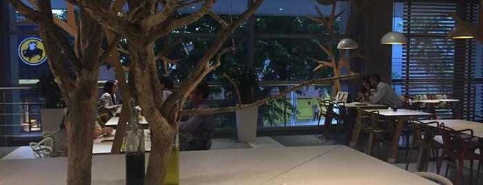 Tree House Market & Coffee is one of Panama.