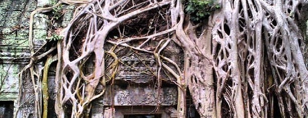 Ta Prohm is one of My TripS :).