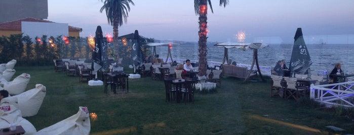 Shaya Beach Cafe & Restaurant is one of Gezintii.