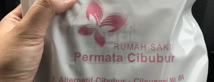 RS Permata Cibubur is one of It's a Boy! & It's a Girl! Badge.