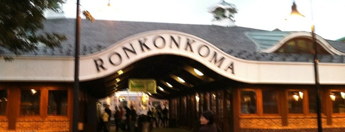 LIRR - Ronkonkoma Station is one of favorite places.
