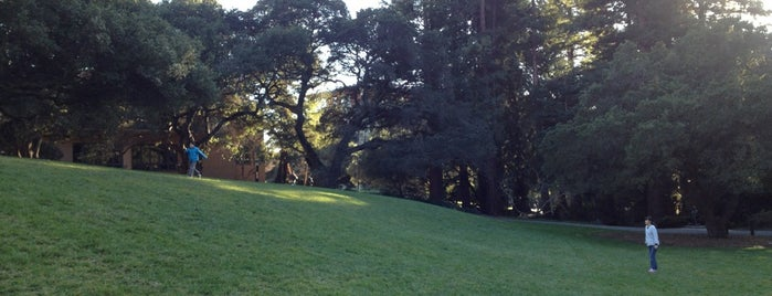 Faculty Glade is one of Guide to Berkeley's best spots.