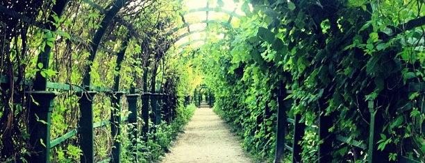 Верхний сад is one of Места для онлайн трансляций.