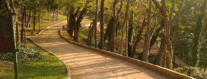 Maçka Demokrasi Parkı is one of İstanbul'daki Park, Bahçe ve Korular.