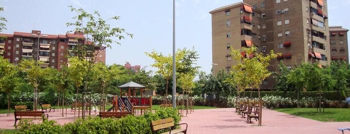 Parque entre las calles Rafal y Pontevedra is one of Alicante (plazas y jardines).